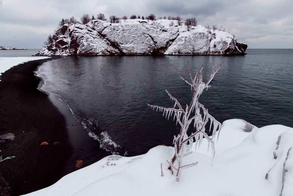My first frozen tree on Lake Superior's Black Beach.