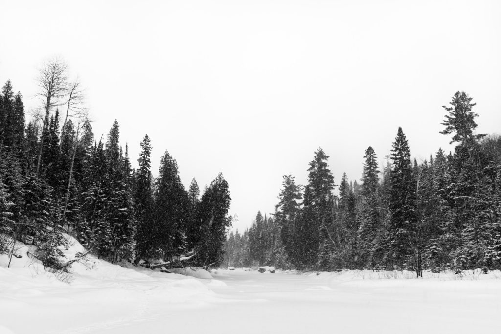 Large, fluffy snowflakes blanketed everything and threatened to bury me if I stayed in one spot for too long, here at Tettegouche State Park.